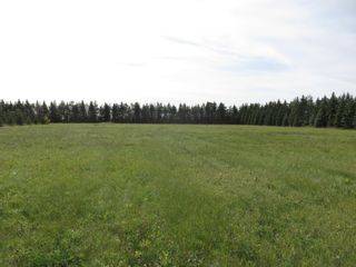 Photo 14: 0 Centreline Road: RM Springfield Vacant Land for sale (R04)  : MLS®# 202103923