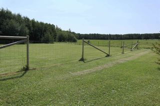 Photo 48: 15070 HWY 771: Rural Wetaskiwin County House for sale : MLS®# E4254089