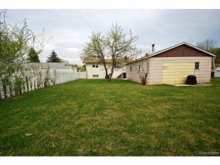 Photo 17: 27 Blue Spruce Crescent in WINNIPEG: St Vital Residential for sale (South East Winnipeg)  : MLS®# 1512368