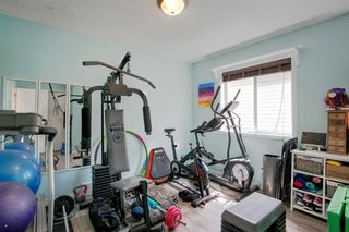 Photo 23: 50 Martha's Place NE in Calgary: Martindale Detached for sale : MLS®# A1119083