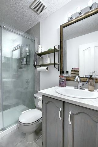 Photo 23: 47 Appleburn Close SE in Calgary: Applewood Park Detached for sale : MLS®# A1049300