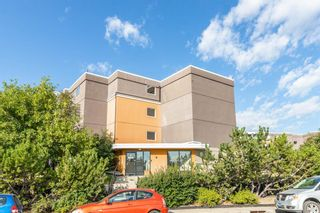 Photo 28: 401C 4455 Greenview Drive NE in Calgary: Greenview Apartment for sale : MLS®# A1052674