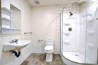 Photo 18: 12 Saddlecreek Terrace NE in Calgary: Saddle Ridge Detached for sale : MLS®# A1141448