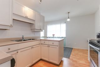 """Photo 13: 301 22722 LOUGHEED Highway in Maple Ridge: East Central Condo for sale in """"Marks Place"""" : MLS®# R2381095"""