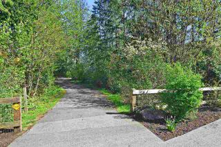"""Photo 20: 10 20966 77A Avenue in Langley: Willoughby Heights Townhouse for sale in """"Natures Walk"""" : MLS®# R2359109"""