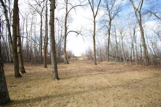 Photo 41: 64 Frontier Road in Winnipeg: Island Beach Residential for sale (R27)  : MLS®# 202108294