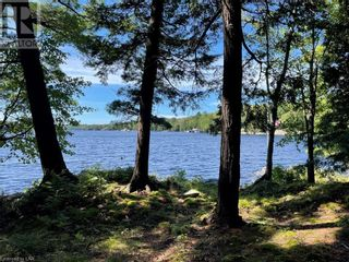 Photo 5: 399 HEALEY LAKE Road in MacTier: House for sale : MLS®# 40163911