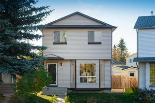Main Photo: 162 Martinbrook Road NE in Calgary: Martindale Detached for sale : MLS®# A1154247