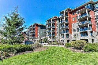 "Photo 1: 504 5055 SPRINGS Boulevard in Delta: Tsawwassen North Condo for sale in ""SPRINGS"" (Tsawwassen)  : MLS®# R2564487"