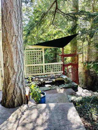 Photo 5: 256 EAST POINT Road: Saturna Island House for sale (Islands-Van. & Gulf)  : MLS®# R2559567