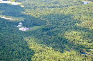 Photo 10: 16536 Rainy Lake in Fort Frances: Vacant Land for sale : MLS®# TB212374