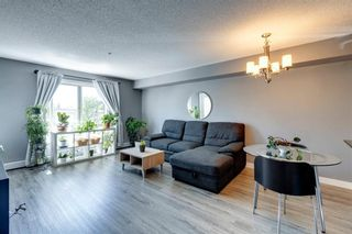 Photo 3: 4207 1317 27 Street SE in Calgary: Albert Park/Radisson Heights Apartment for sale : MLS®# A1126561