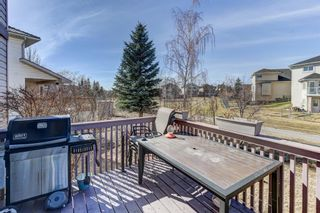 Photo 38: 216 Coral Shores Court NE in Calgary: Coral Springs Detached for sale : MLS®# A1116922