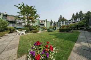 Photo 17: 311 9202 HORNE STREET in Burnaby: Government Road Condo for sale (Burnaby North)  : MLS®# R2297402