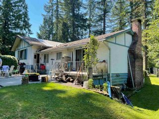 Photo 12: 23553 DOGWOOD Avenue in Maple Ridge: East Central House for sale : MLS®# R2600353