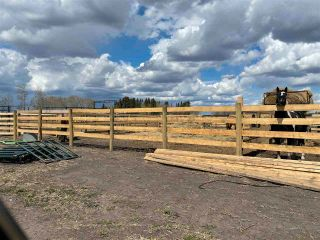 Photo 33: Twp 604 Rg Rd 244: Rural Westlock County Rural Land/Vacant Lot for sale : MLS®# E4223747