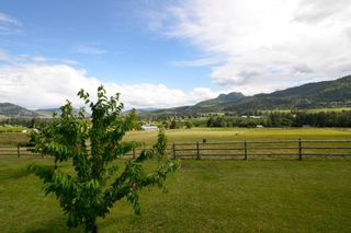 Photo 40: 6874 Buchanan Road in Coldstream: Mun of Coldstream House for sale (North Okanagan)  : MLS®# 10119056