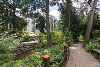 Photo 28: 103 866 Brock Ave in : La Langford Proper Condo for sale (Langford)  : MLS®# 863726