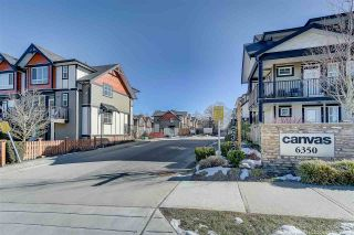 """Photo 14: 25 6350 142 Street in Surrey: Sullivan Station Townhouse for sale in """"Canvas"""" : MLS®# R2343782"""