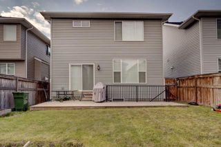 Photo 33: 38 AUBURN SPRINGS Close SE in Calgary: Auburn Bay Detached for sale : MLS®# C4203889