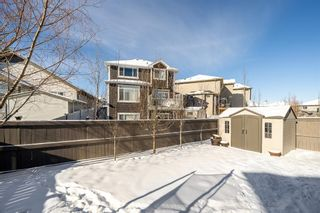 Photo 48: 39 Cimarron Springs Way: Okotoks Detached for sale : MLS®# A1069852