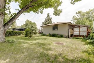 Photo 39: 2935 Burgess Drive NW in Calgary: Brentwood Detached for sale : MLS®# A1132281