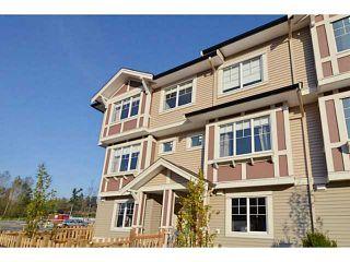 Photo 18: 53 10151 240 Street in Maple Ridge: Albion Home for sale ()  : MLS®# V1089172