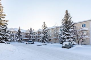 Photo 36: 1204 11 Chaparral Ridge Drive SE in Calgary: Chaparral Apartment for sale : MLS®# A1066729