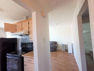 Photo 3: 911 Whitehill Way NE in Calgary: Whitehorn Detached for sale : MLS®# A1118119