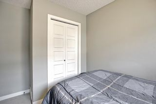 Photo 24: 144 Pantego Lane NW in Calgary: Panorama Hills Row/Townhouse for sale : MLS®# A1129273