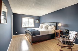 Photo 24: 690 Coventry Drive NE in Calgary: Coventry Hills Detached for sale : MLS®# A1144228