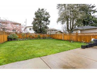 Photo 19: 7981 15TH AVE - LISTED BY SUTTON CENTRE REALTY in Burnaby: East Burnaby 1/2 Duplex for sale (Burnaby East)  : MLS®# V1113496