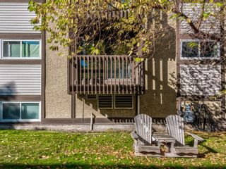 Main Photo: 10 366 94 Avenue SE in Calgary: Acadia Apartment for sale : MLS®# A1053841
