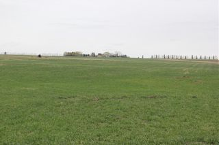 Photo 7: On Highway 567 in Rural Rocky View County: Rural Rocky View MD Land for sale : MLS®# C4233359