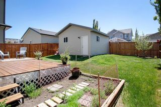 Photo 30: 955 Prairie Springs Drive SW: Airdrie Detached for sale : MLS®# A1115549