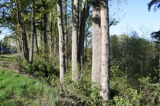 Photo 7: LT 1 Tappin St in : CV Union Bay/Fanny Bay Land for sale (Comox Valley)  : MLS®# 858577