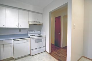 Photo 11: 15223 61 Street in Edmonton: Zone 02 House for sale : MLS®# E4264134
