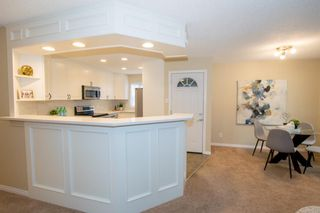 Photo 12: 246 Allan Crescent SE in Calgary: Acadia Detached for sale : MLS®# A1062297