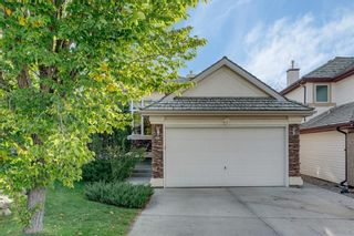 Photo 37: 8 SPRINGBANK Court SW in Calgary: Springbank Hill Detached for sale : MLS®# C4270134
