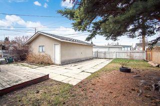 Photo 10: 4232 Marwood Road NE in Calgary: Marlborough Detached for sale : MLS®# A1102550