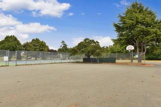 Photo 52: 2536 ASQUITH St in : Vi Oaklands House for sale (Victoria)  : MLS®# 883783