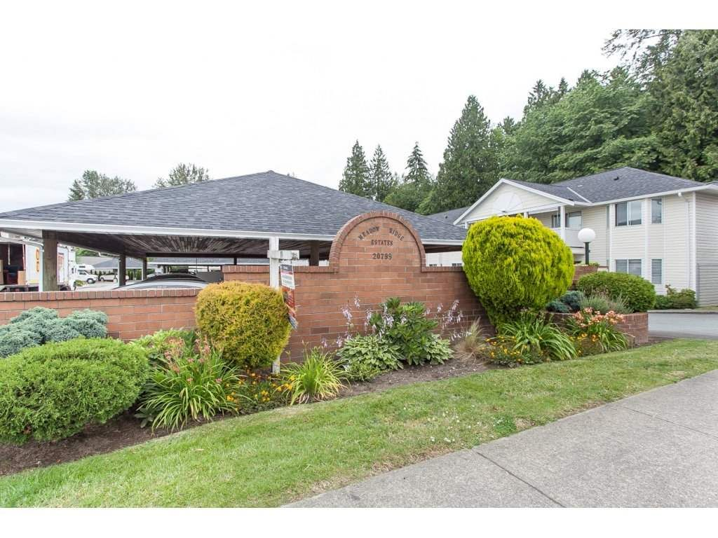 "Main Photo: 29 20799 119 Avenue in Maple Ridge: Southwest Maple Ridge Townhouse for sale in ""Meadowridge Estates"" : MLS®# R2082591"