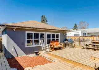 Photo 36: 3042 30A Street SE in Calgary: Dover Detached for sale : MLS®# A1097578