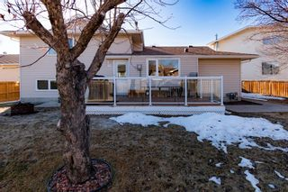 Photo 37: 132 Silver Springs Green NW in Calgary: Silver Springs Detached for sale : MLS®# A1082395