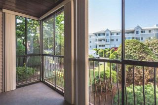 """Photo 16: 103 32910 AMICUS Place in Abbotsford: Central Abbotsford Condo for sale in """"Royal Oaks"""" : MLS®# R2355300"""