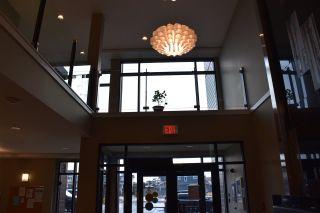 Photo 24: 337 1008 ROSENTHAL Boulevard in Edmonton: Zone 58 Condo for sale : MLS®# E4226292