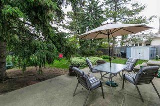 Photo 29: 15108 56 Avenue in Edmonton: Zone 14 House for sale : MLS®# E4248241