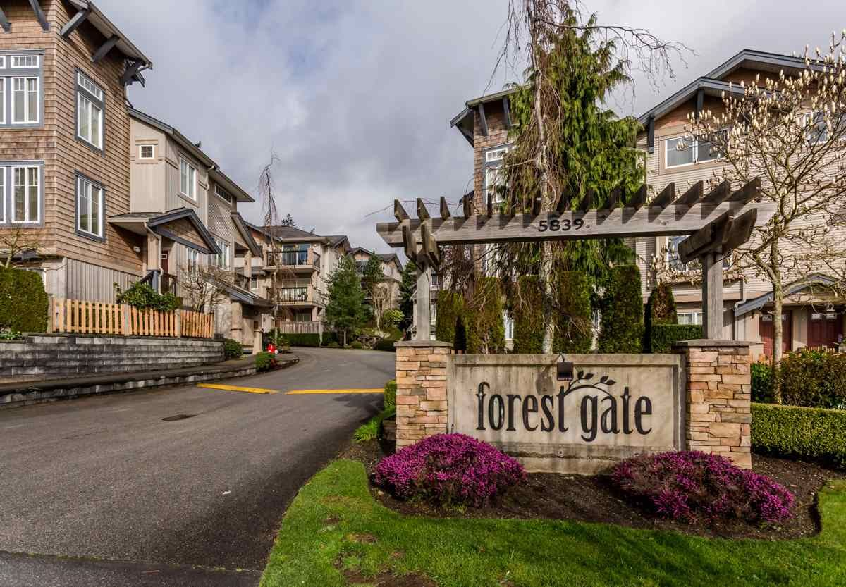 """Main Photo: 17 5839 PANORAMA Drive in Surrey: Sullivan Station Townhouse for sale in """"Forest Gate"""" : MLS®# R2046887"""