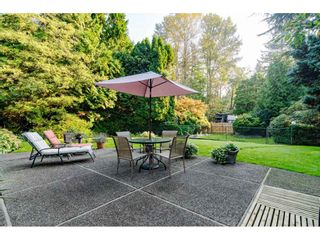 """Photo 31: 3852 196 Street in Langley: Brookswood Langley House for sale in """"Brookswood"""" : MLS®# R2506766"""