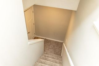 Photo 25: 166 Howse Common in Calgary: Livingston Detached for sale : MLS®# A1143791